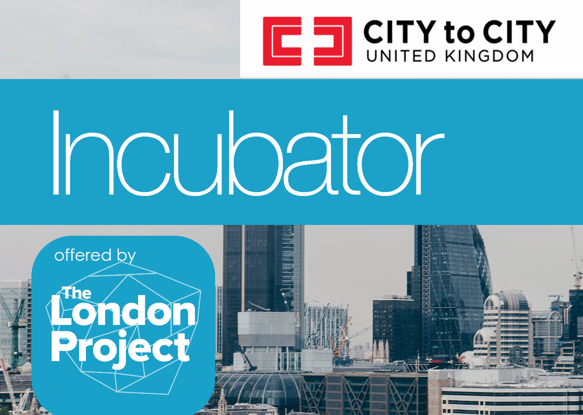 City to City Incubator: Year 1